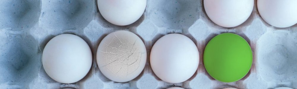 Not All Eggs Are Created Equal – Same For Floor Panels